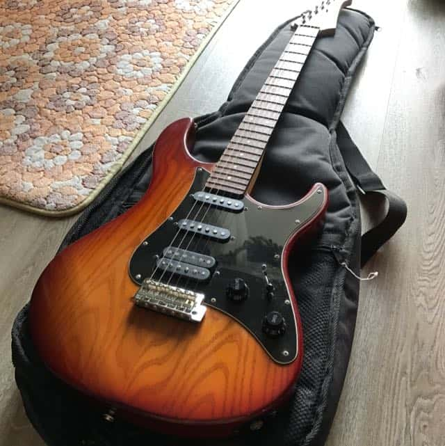 Essential Electric Guitar Gear Everyone Should Own: A Beginner's Guide